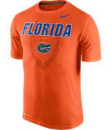 Men's Nike Florida Gators College Legend Icon T-Shirt