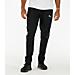 Men's Puma Evo Stripe Pants Product Image