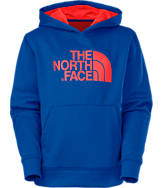 Boys' The North Face Logo Surgent Hoodie