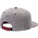 Back view of Zephyr Alabama Crimson Tide College Avenue Snapback Hat in Team Colors