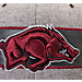 Alternate view of Zephyr Arkansas Razorbacks College Avenue Snapback Hat in Team Colors