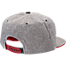 Back view of Zephyr Arizona Wildcats College Avenue Snapback Hat in Team Colors
