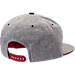 Back view of Zephyr Wisconsin Badgers College Avenue Snapback Hat in Team Colors
