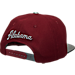 Back view of Zephyr Alabama Crimson Tide College Composite Snapback Hat in Team Colors