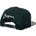 Back view of Zephyr Oregon Ducks College Composite Snapback Hat in Team Colors