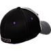 Back view of Zephyr Washington Huskies College Graphite Flex Cap in Team Colors