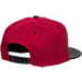 Back view of Zephyr Iowa State Cyclones College Anarchy Snapback Hat in Team Colors