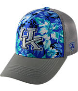 Top Of The World Kentucky Wildcats College Ocean Front Fitted Cap