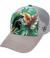Top Of The World Michigan State Spartans College Ocean Front Fitted Cap