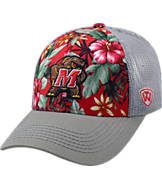 Top Of The World Maryland Terrapins College Ocean Front Fitted Cap