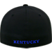 Back view of Top Of The World Kentucky Wildcats College Rails Performance Flex Fit Hat in Black