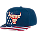 Front view of Men's adidas Chicago Bears NBA 2016 Patriotic Snapback Hat in Team Colors