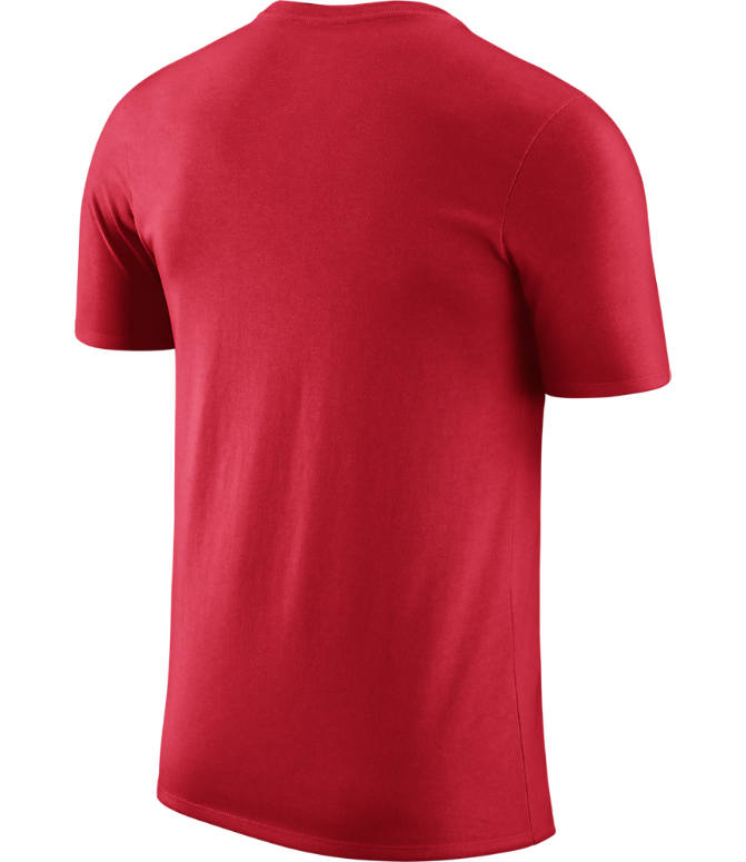 Back view of Men's Nike Toronto Raptors NBA Logo T-Shirt in University Red