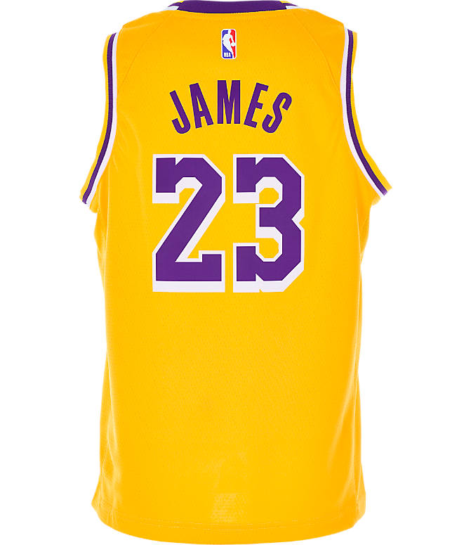 low priced 33b92 360ad Kids' Nike Los Angeles Lakers NBA LeBron James Icon Edition Swingman Jersey