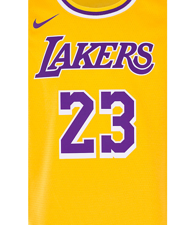 low priced 599ed 74455 Kids' Nike Los Angeles Lakers NBA LeBron James Icon Edition Swingman Jersey