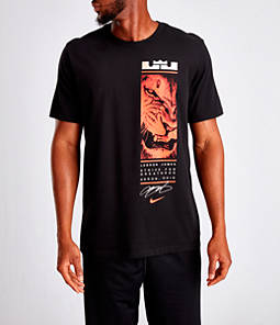 Men's Nike Dri-FIT LeBron Lion Strive T-Shirt