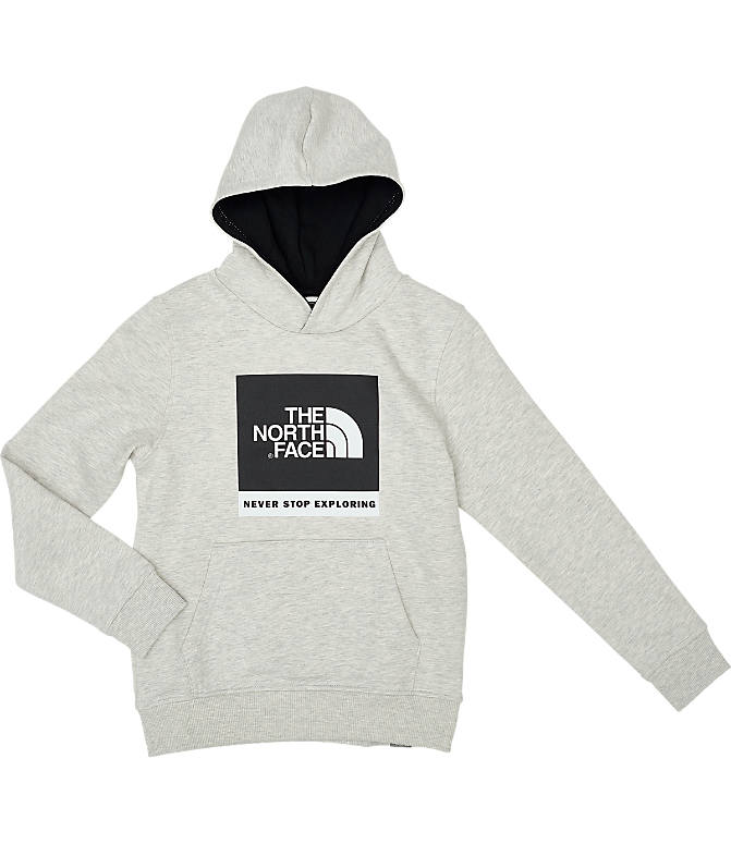 Back view of Boys' The North Face Box Logo Hoodie in Oat/Heather