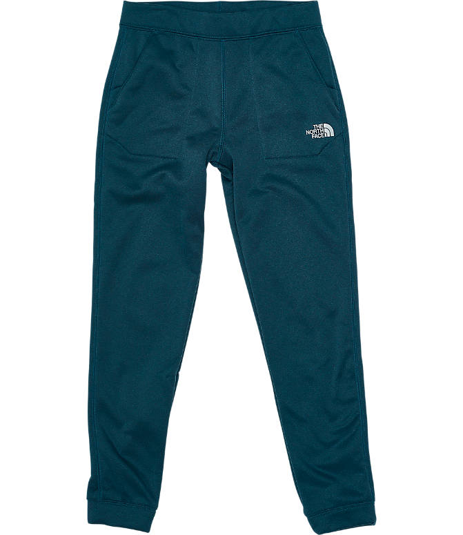 Front view of Boys' The North Face Surgent Pants in Navy