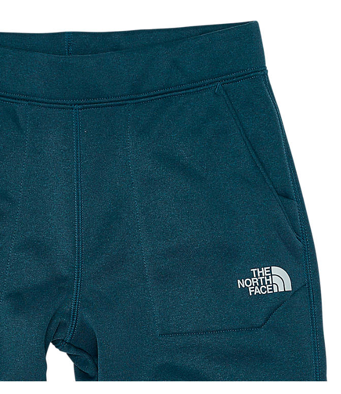 Back view of Boys' The North Face Surgent Pants in Navy
